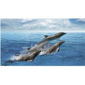 Дельфины (рисунок)